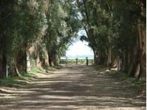 Farm / Ranch / Plantation for sales at La Corona Chascomus, 부에노스아이레스 아르헨티나