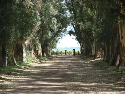 Landgut / Bauernhof / Plantage for sales at La Corona Chascomus, Buenos Aires Argentina