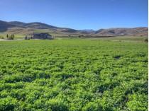 토지 for sales at Spectacular Setting On 4.83 Acres 646 W Elk Run Dr   Morgan, 유타 84050 미국