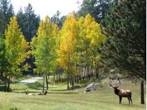土地 for sales at Stagecoach Stop 3384 Timbergate Trail   Evergreen, コロラド 80439 アメリカ合衆国