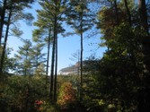 Land for sales at Lot 3 Whiteside Woods  Cashiers,  28717 United States