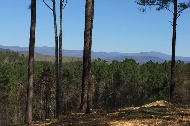 West/Northwest Panoramic Mountain Views - Land - Sale