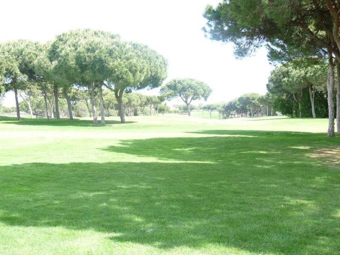 Land for sales at Real estate land for Sale Loule, Algarve Portugal