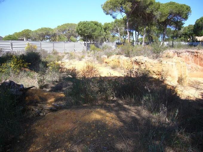 土地 for sales at Real estate land for Sale Loule, Algarve ポルトガル