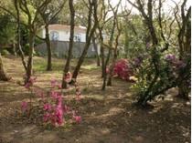 独户住宅 for sales at House, 6 bedrooms, for Sale Colares, Sintra, 葡京 葡萄牙