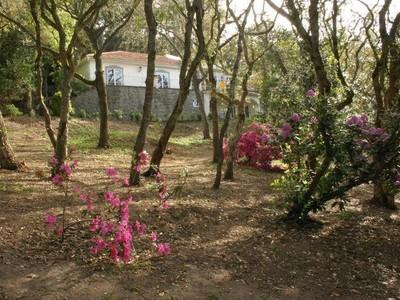 Частный односемейный дом for sales at House, 6 bedrooms, for Sale Colares, Sintra, Лиссабон Португалия