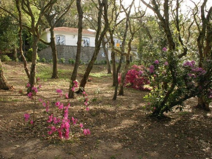 Einfamilienhaus for sales at House, 6 bedrooms, for Sale Colares, Sintra, Lissabon Portugal