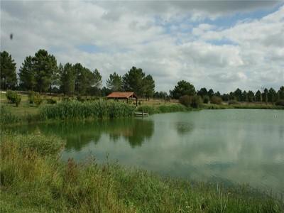 Hacienda / Granja / Rancho / Plantación for sales at Farm, 8 bedrooms, for Sale Alcacer Da Sal, Setubal Portugal