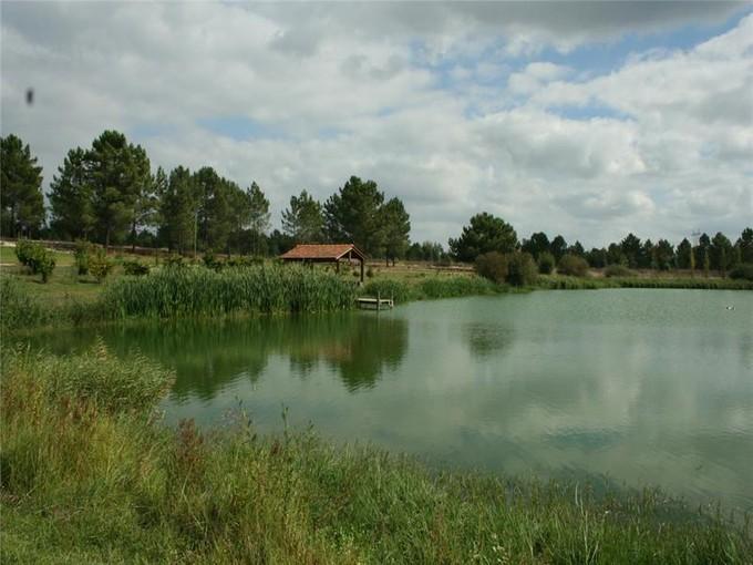 農場 / 牧場 / 種植場 for sales at Farm, 8 bedrooms, for Sale Alcacer Da Sal, 塞圖巴爾 葡萄牙