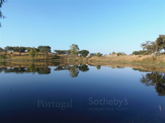 Farm / Ranch / Plantation for sales at Country Estate, 3 bedrooms, for Sale Ourique, Beja Portugal
