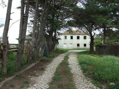 Ферма / ранчо / плантация for sales at Farm for Sale Sintra, Sintra, Лиссабон Португалия