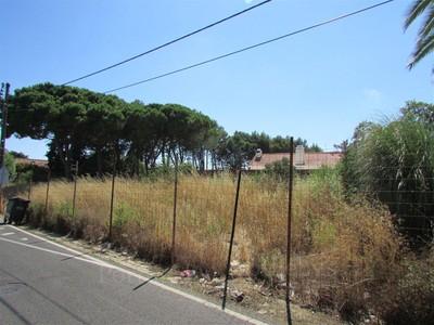 토지 for sales at Real estate land for Sale Birre, Cascais, 리스보아 포르투갈