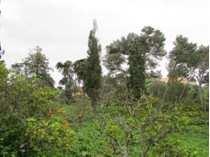 Terreno for sales at Real estate land for Sale Sao Joao Estoril, Cascais, Lisbona Portogallo