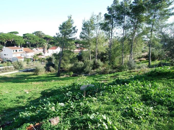 地產 for sales at Stand for Sale Cascais, 葡京 葡萄牙