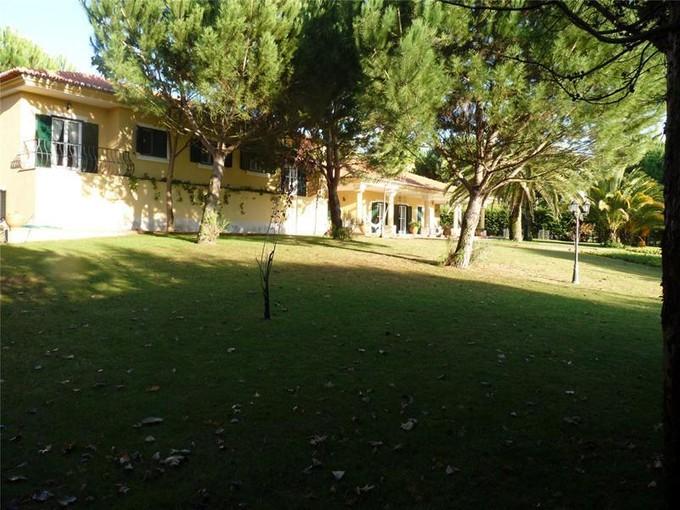 Villa for sales at House, 5 bedrooms, for Sale Santarem, Santarem Portogallo