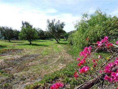 地產 for sales at Real estate land for Sale Loule, Algarve 葡萄牙