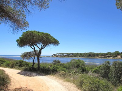 Land for sales at Stand for Sale Loule, Algarve Portugal