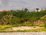 Property Of Real estate land for Sale