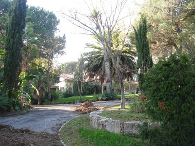 Ферма / ранчо / плантация for sales at Farm, 6 bedrooms, for Sale Cascais, Лиссабон Португалия
