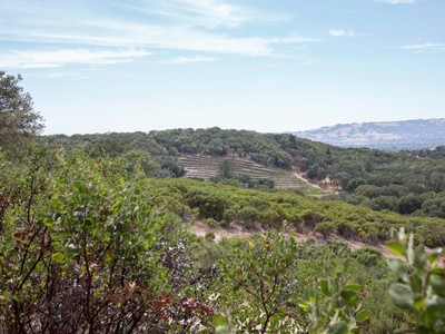 Land for sales at Beautiful 15 +/-  Acre Estate View Lot 3736 Wood Valley Road Sonoma, California 95476 United States
