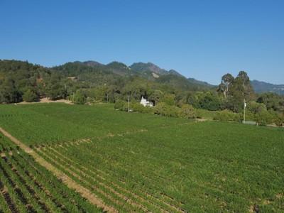 Farm / Ranch / Plantation for sales at Annadel Estate Winery 6687 Sonoma Highway  Santa Rosa, California 95405 United States