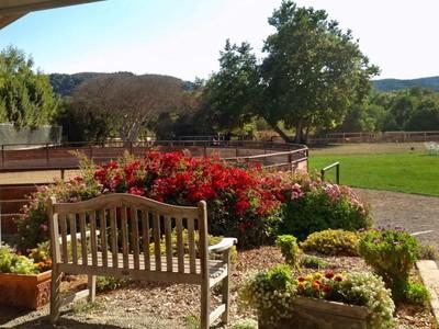 地產 for sales at Carmel Equestrian Living at Mid Valley 28000 Selfridge Lane Carmel, 加利福尼亞州 93923 美國