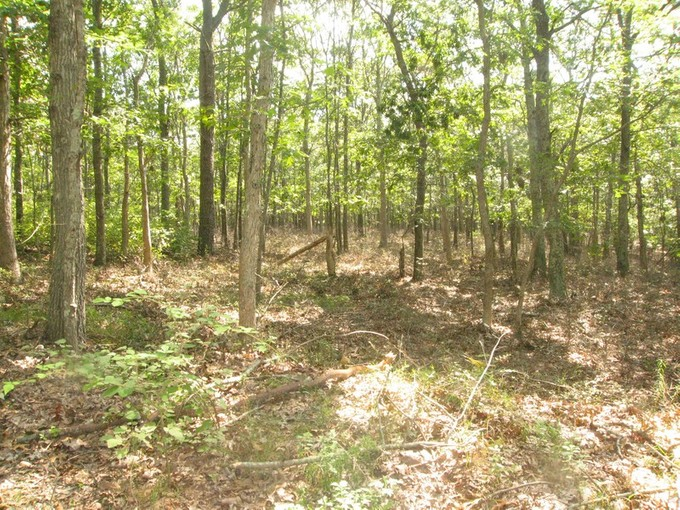 Land for sales at Beautiful Northwest Parcel  East Hampton, New York 11937 United States