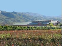 Fazenda / Rancho / Plantação for sales at Carpinteria Farm 5300 Foothill Road   Carpinteria, Califórnia 93013 Estados Unidos