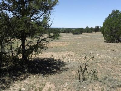Đất đai for sales at Lot 1-C Tierra de Dios Lot C-1 Tierra De Dios  Rowe, New Mexico 87562 Hoa Kỳ