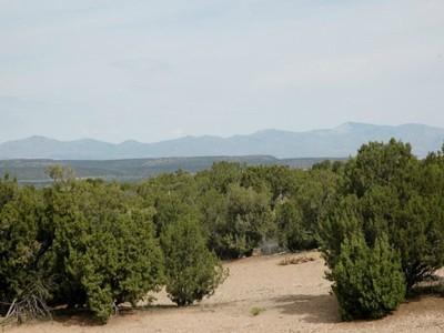 for sales at 13 Canyon Vista Court 13 Canyon Vista Ct # 511  Santa Fe, New Mexico 87506 Vereinigte Staaten