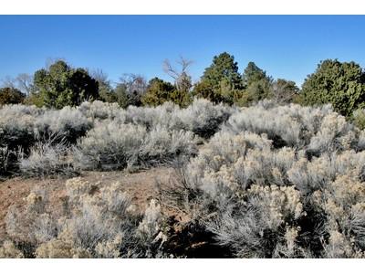 Land for sales at 629 Caminito Del Sol   Santa Fe, New Mexico 87505 United States
