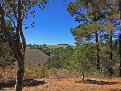 for sales at Tehama Custom Homesite with Views 83 Whispering Pines Carmel, 加利福尼亚州 93923 美国