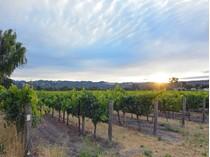 土地 for sales at Eastside Estate Site and Vineyard 616 Napa Road   Sonoma, カリフォルニア 95476 アメリカ合衆国