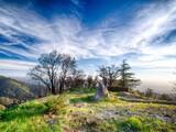 Land for sales at 46314 Pfeiffer Ridge Road  Big Sur, California 93920 United States