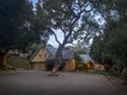 ブドウ園 for  sales at French Country Vineyard Estate    Solvang, カリフォルニア 93463 アメリカ合衆国