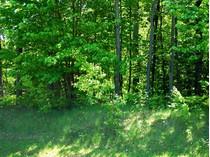 Terrain for sales at Preserve South 36 6989 Preserve Drive South Unit #36   Bay Harbor, Michigan 49770 États-Unis