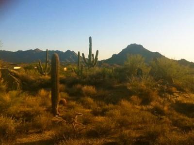 Arazi for sales at 9.57 Acres in Goldie Brown Pinnacle Peak 28787 N 114th Street #39 Scottsdale, Arizona 85262 Amerika Birleşik Devletleri