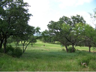 Terreno for sales at Horseshoe Bay Golf Course Lot on The 6th Hole 2803 Coyote Horseshoe Bay, Texas 78657 Estados Unidos