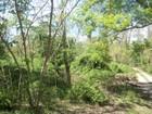 Đất đai for sales at Land 57 F Strobel Rd Shelter Island, New York 11964 Hoa Kỳ
