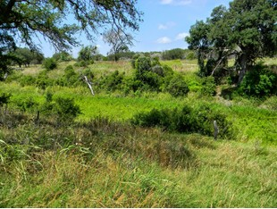 Land for sales at Waterfront Lot in Spring Branch 123 Corona Way Spring Branch, Texas 78070 United States