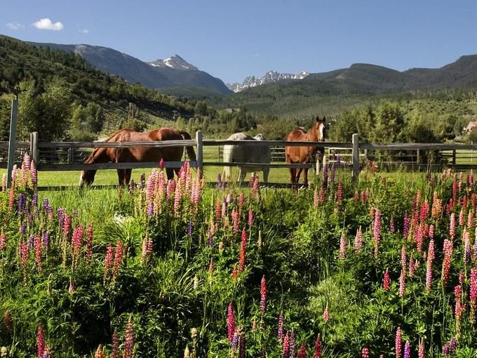 Farm / Ranch / Plantation for sales at 1705 Lake Creek Road  Edwards, Colorado 81632 United States