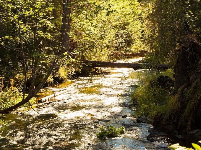Terreno for sales at Three Forks of Lazy Creek Lupfer Road Whitefish, Montana 59937 Estados Unidos