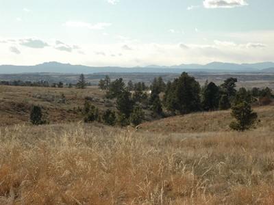 Land for sales at 8620 Preservation Trail  Parker, Colorado 80134 United States