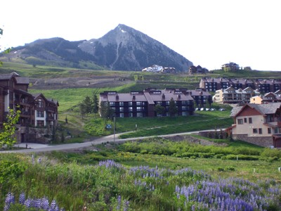 Terrain for sales at Bear Crossing   Multi-Family Development Lot 14 Castle Road Mount Crested Butte, Colorado 81225 États-Unis