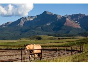 Additional photo for property listing at Wilson Peak Ranch 101 Buckskin Road Telluride, Colorado 81435 Hoa Kỳ