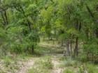 Hacienda / Granja / Rancho / Plantación for sales at Gorgeous Lot in Boerne 20 +/-ac Dodge Rd Boerne, Texas 78006 Estados Unidos