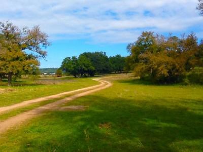 Granjas / Hacienda / Platanción for sales at 220 Acres Maynard Ranch FM 1863  Bulverde, Texas 78163 Estados Unidos
