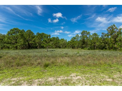Land for sales at GOLDEN GATE ESTATES 2685  4th St  NE Naples, Florida 34120 United States