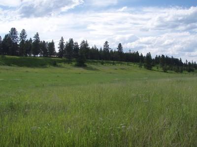 토지 for sales at Farm to Market Land 2905 Farm to Market Road  Kalispell, 몬타나 59901 미국
