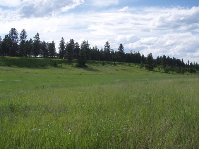 Terrain for sales at Farm to Market Land 2905 Farm to Market Road  Kalispell, Montana 59901 États-Unis